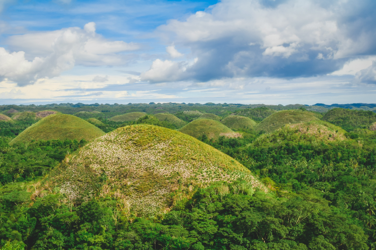 how to travel from cebu to bohol